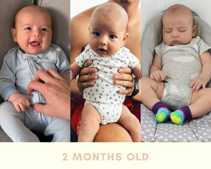 15 weeks pregnant (19)